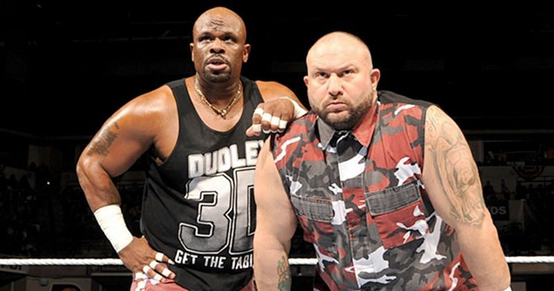 The Dudley Boys were a legendary tag team in professional wrestling.
