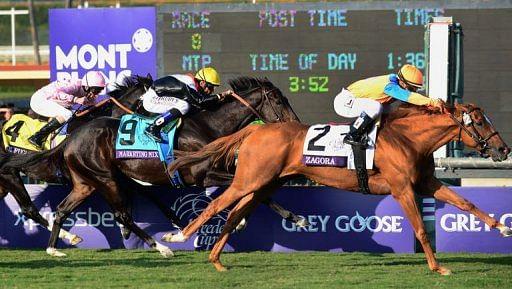 Jockey Javier Castellano rides Zagora to victory