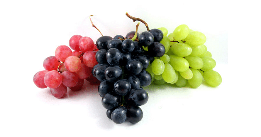 Black Grapes And Green Grapes Nutrition Health Benefits Difference